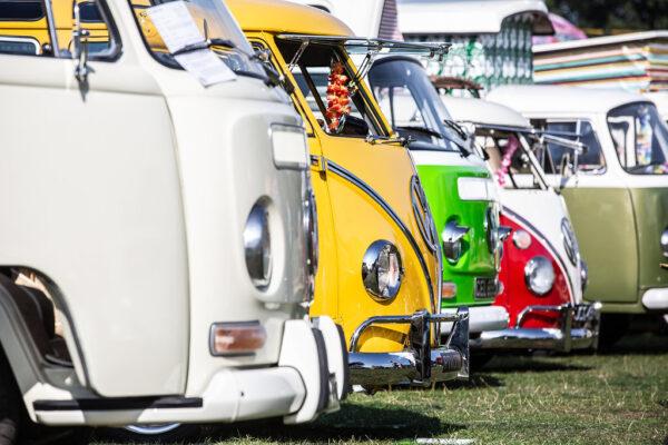 VW camper vans lined up
