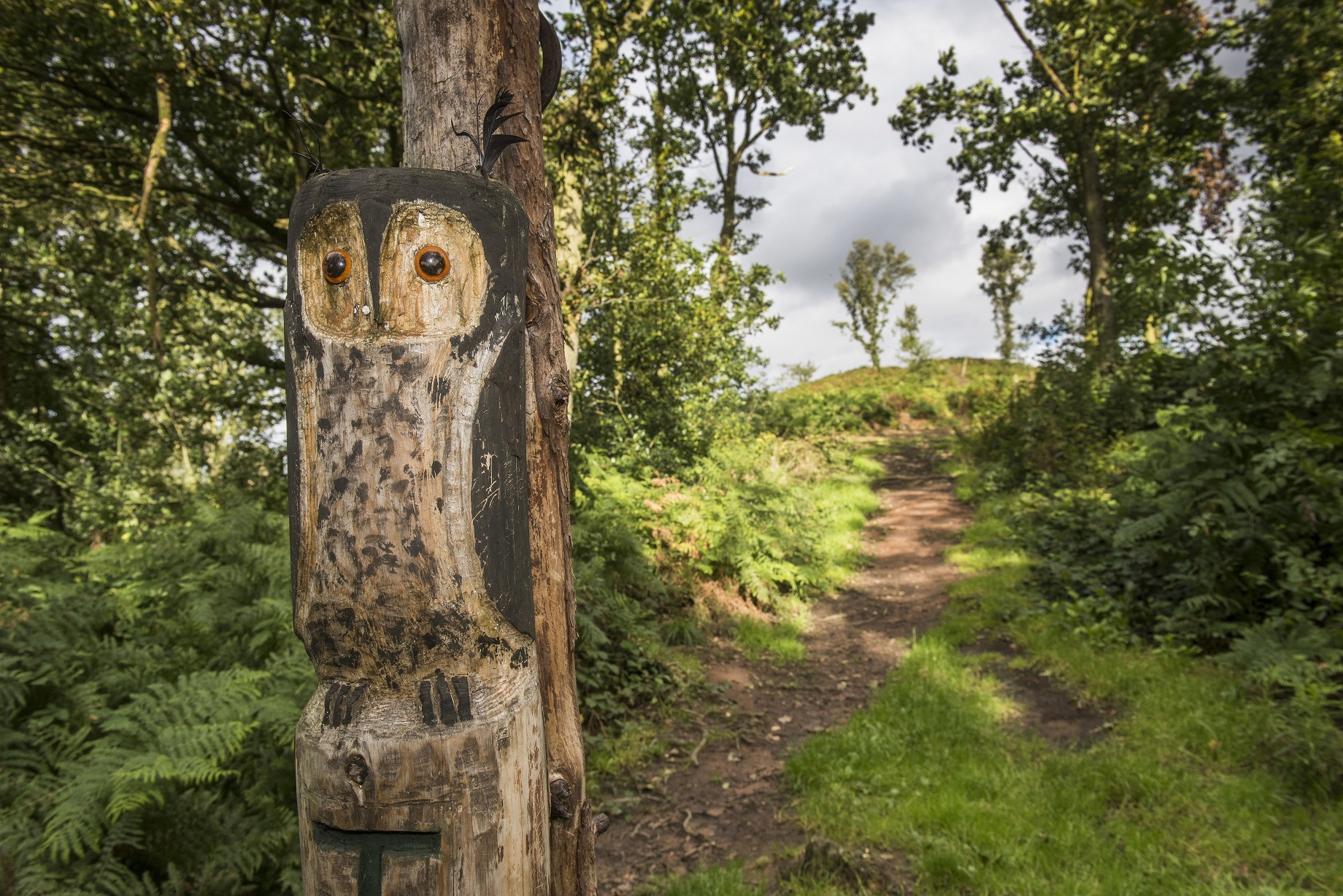 wood carving, path and trees