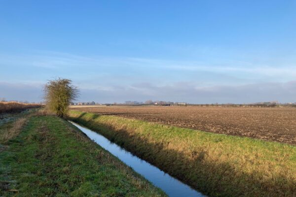 Beck and fields in Riccall