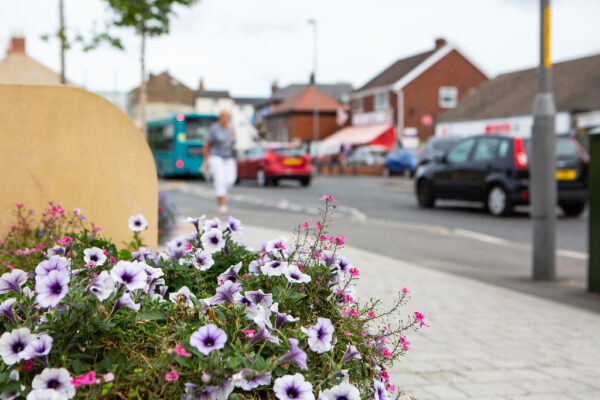 Floral display on the high street