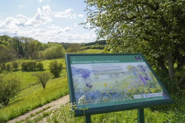 Information board and landscape at Brockadale Nature Reserve