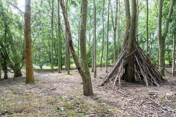 Woodland and den at Barlow Common